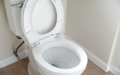 Why Won't My Toilet Flush?